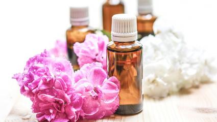 Des huiles essentielles pour assainir l'appareil urinaire